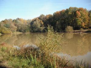 étang des Moreaux