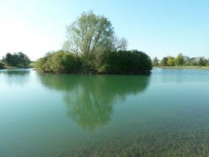 étang pêche - - Brécy