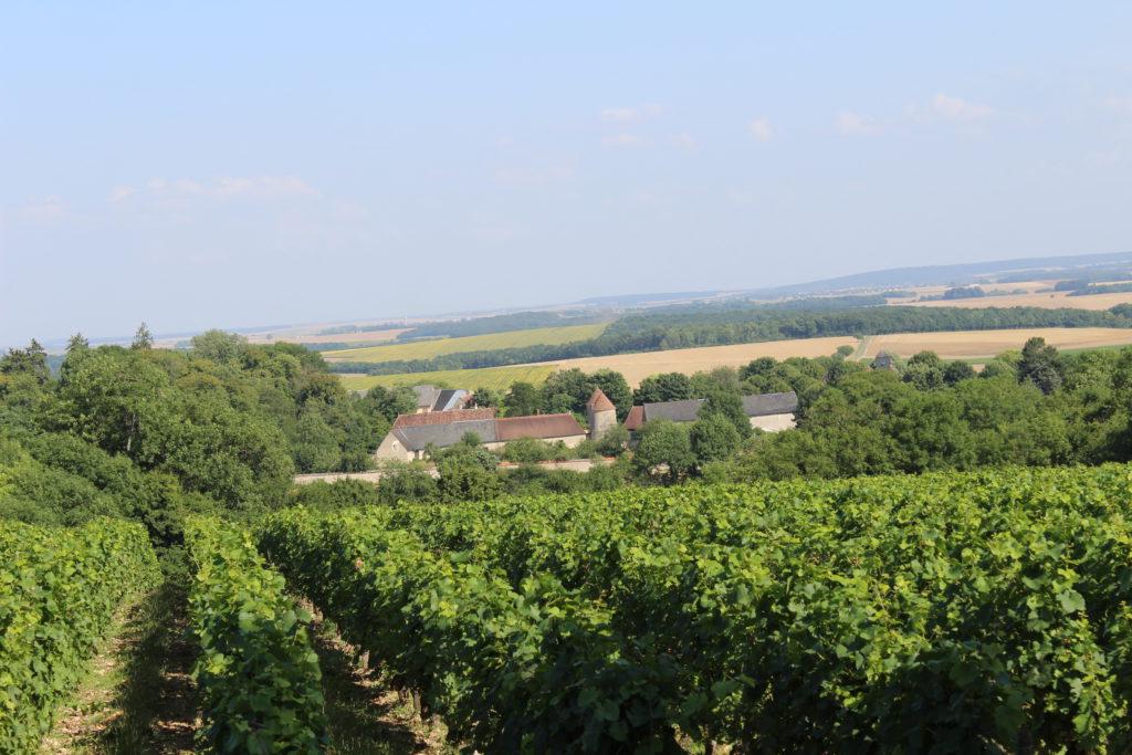 St Céols vignes et village