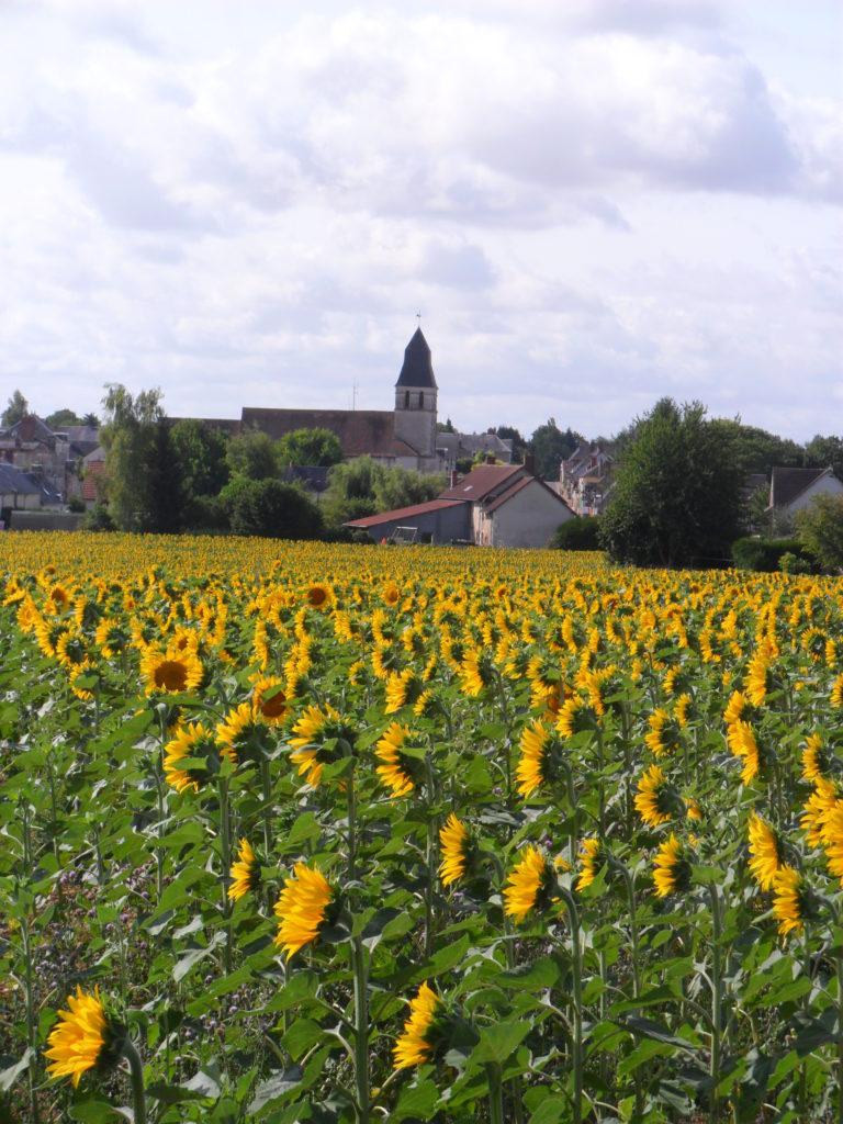 vue du village - Rians