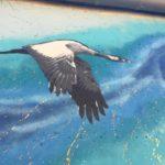 Les oiseaux … le début d'une histoire…